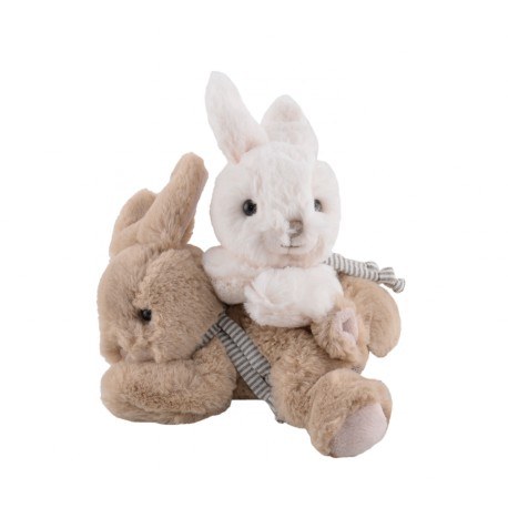 małe króliczki Buster and Coco