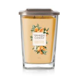 Kumquat & Orange Duża świeca sojowa z 2 knotami